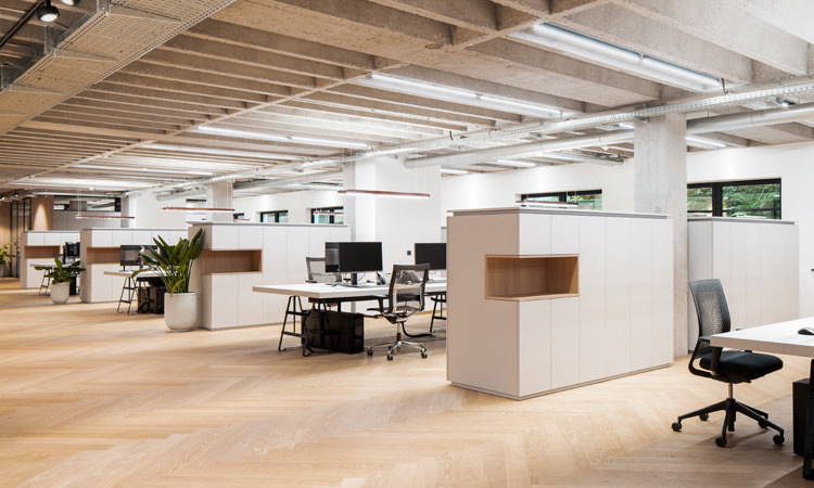 This beautiful open-plan offices can look