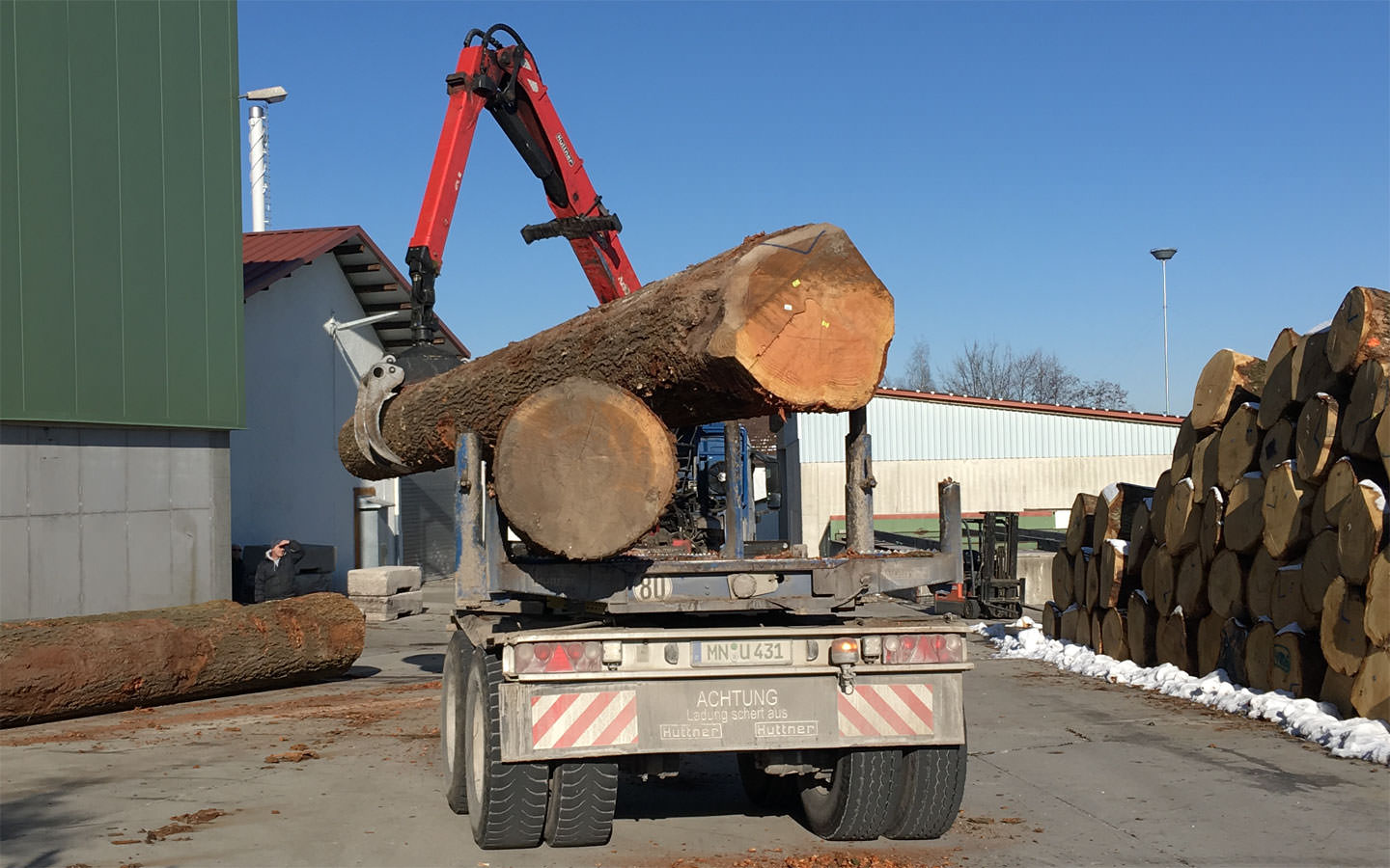 Unloading of a wood giant